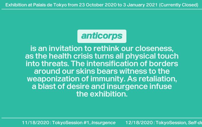 Anticorps exhibition website, Palais de Tokyo 1