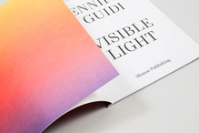 <cite>Jennifer Guidi: Visible Light</cite>
