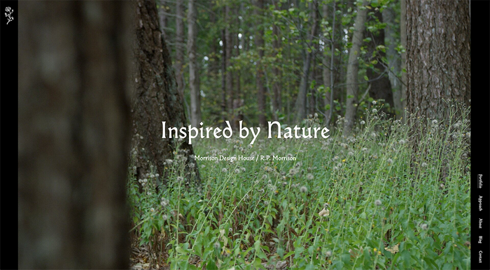 Deciduous Studio website 7