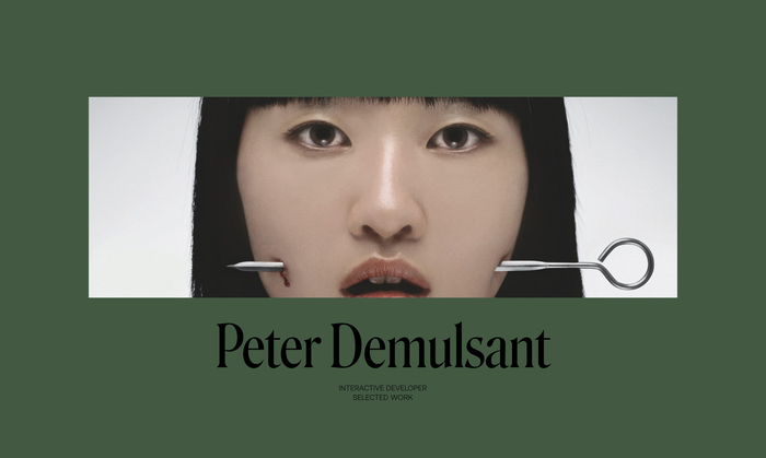 Peter Demulsant portfolio website 1