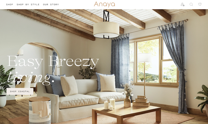 Anaya Home website 1