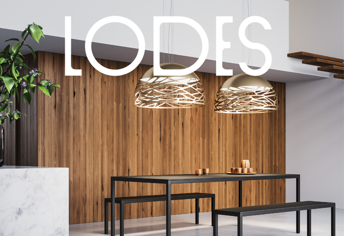 Lodes (2020 rebranding) 7