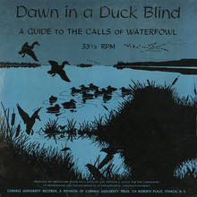 <cite>Dawn In A Duck Blind</cite> album art