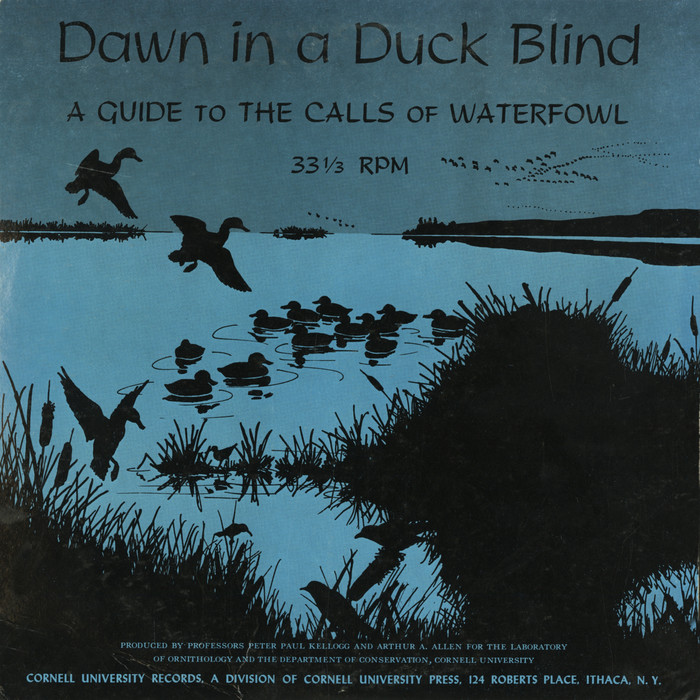 Dawn In A Duck Blind album art