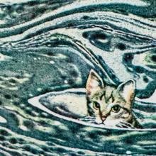<cite>Jennie</cite> by Paul Gallico (1972 Pengiun Edition)