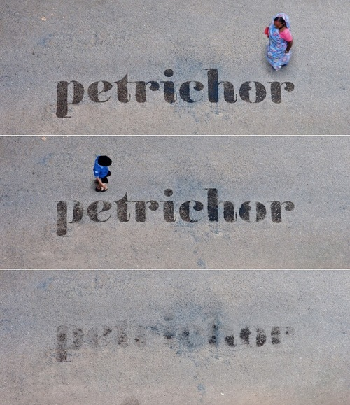 Type Out Two: Petrichor 1