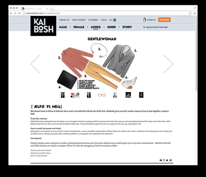 Kaibosh website 2