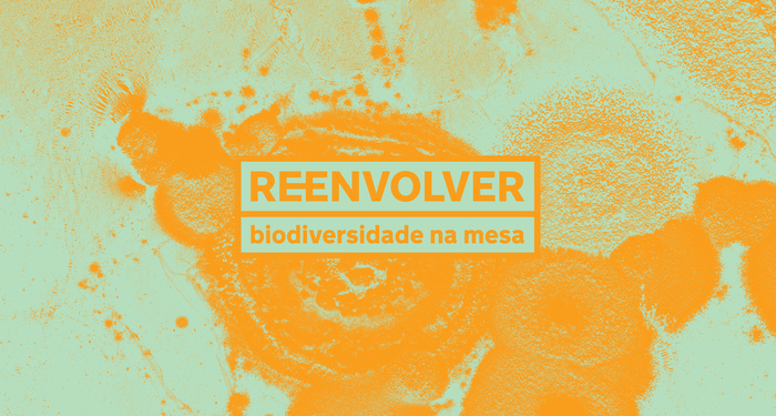 Reenvolver identity and packaging 3