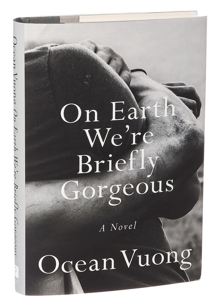 On Earth We're Briefly Gorgeous book jacket 1