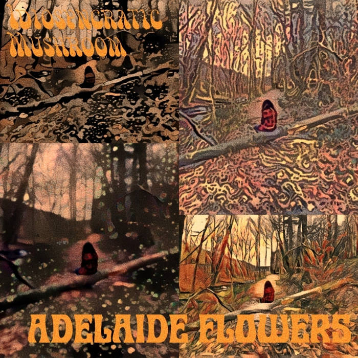 Idiosyncratic Mushroom – In The Space and Adelaide Flowers album art 2