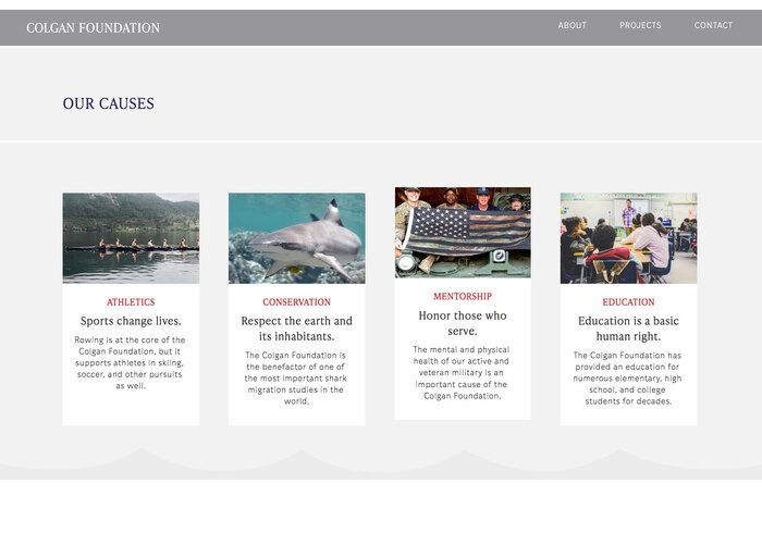Colgan Foundation website 4