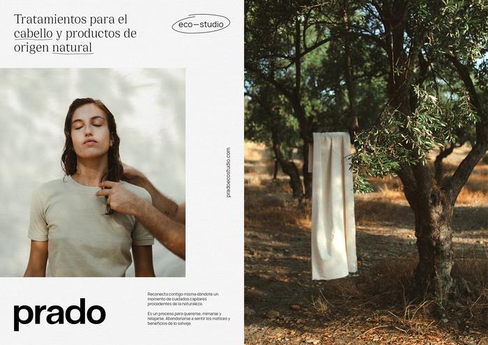 Prado Eco-studio 5
