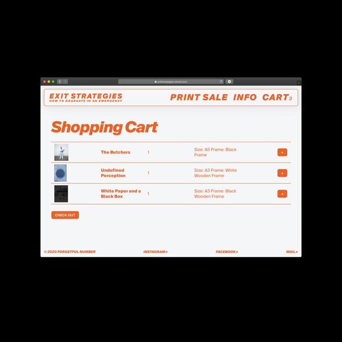 Exit Strategies online store 4