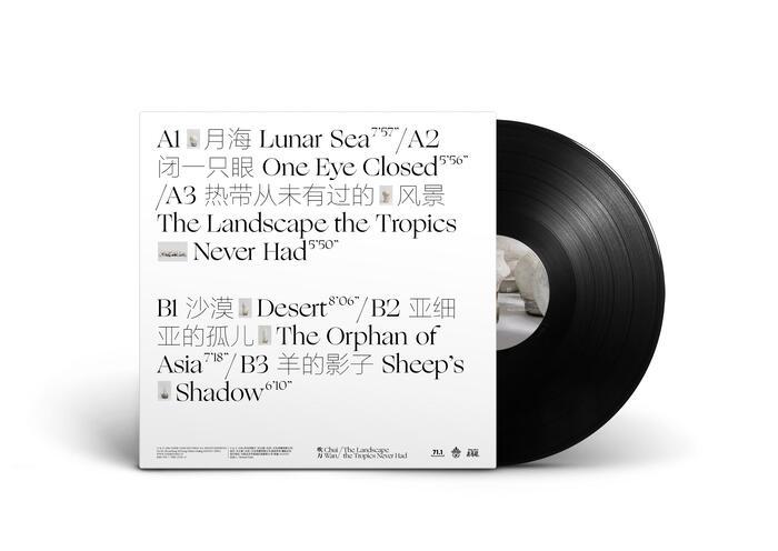 Chui Wan – The Landscape the Tropics Never Hadalbum art and tour posters 2