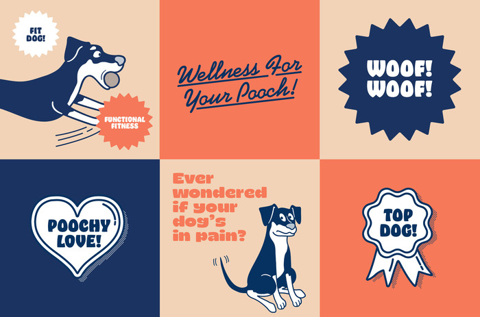 The Dog Wellness Centre 7