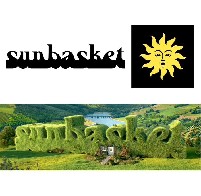 Sunbasket branding 3
