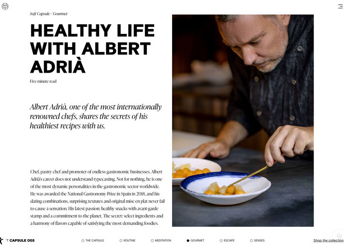 Massimo Dutti website 5