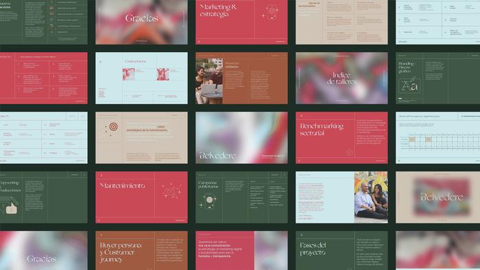 Belvedere Agency identity & website 4