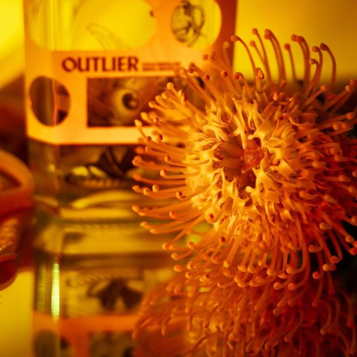 Diviners Distillery 5