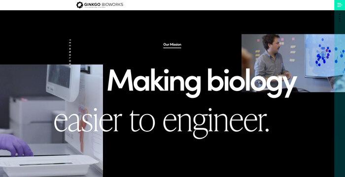 Ginkgo Bioworks website 2