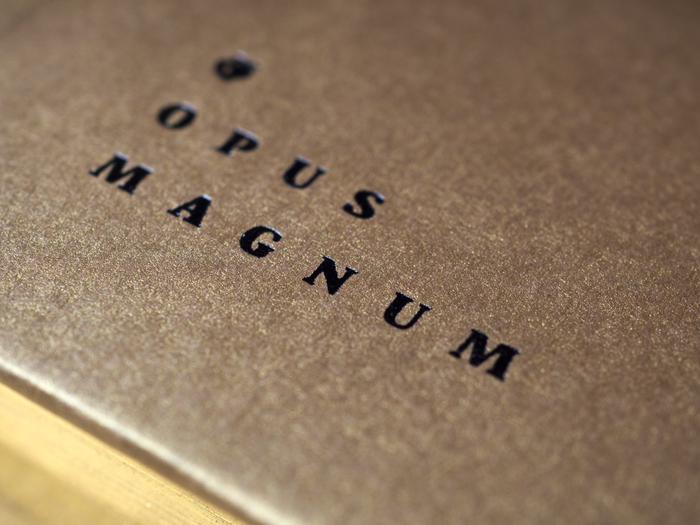 Willmann. Opus magnum 5