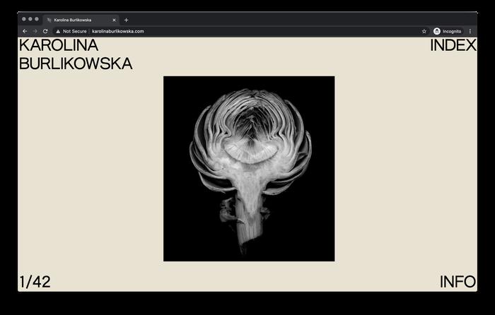 Karolina Burlikowska website 1