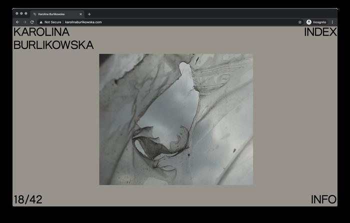 Karolina Burlikowska website 3