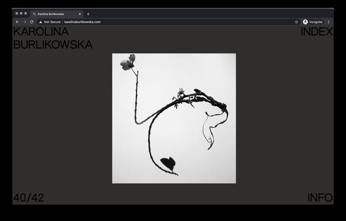 Karolina Burlikowska website 5