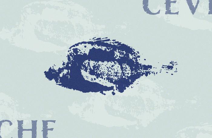 Cevicheria Illary 6