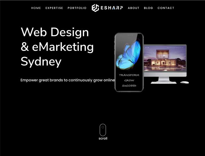 eSharp portfolio website 1