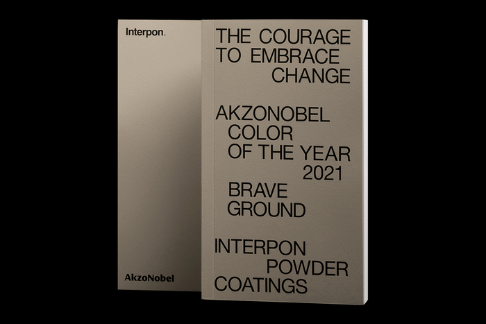 "Akzo Nobel Color of the Year 2021 ""Brave Ground"" 2"