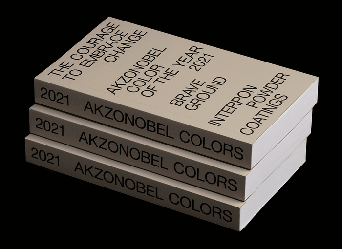 "Akzo Nobel Color of the Year 2021 ""Brave Ground"" 4"