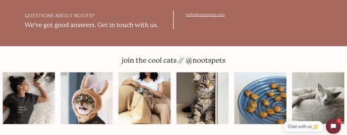Noots Pets website 3
