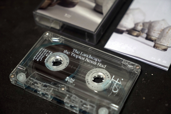 Chui Wan – The Landscape the Tropics Never Hadalbum art and tour posters 4