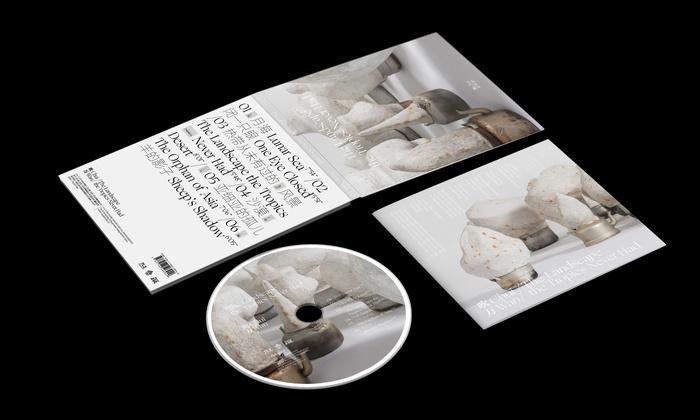 Chui Wan – The Landscape the Tropics Never Hadalbum art and tour posters 3