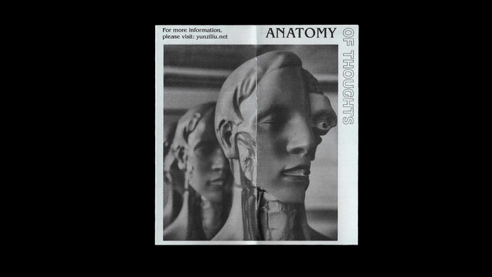 The Anatomy of Thoughts 2