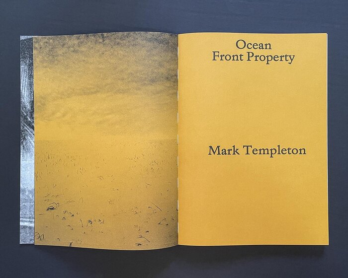 Ocean Front Property by Mark Templeton 1