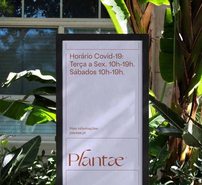 Plantae 2
