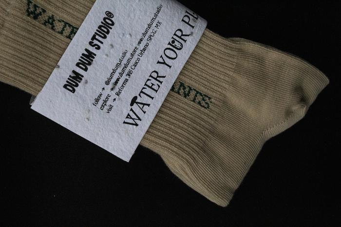 """Water Your Plants"" socks 8"