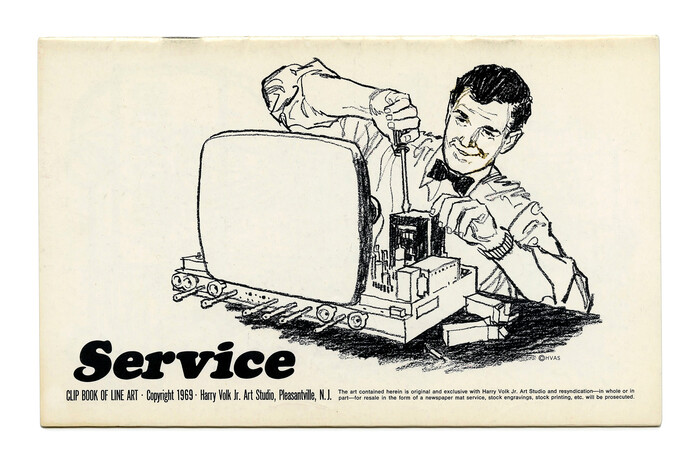 """""""Service"""" (No. 519) with what looks like an apocryphal , obliqued with a fancy S."""