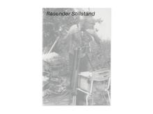<cite>Rasender Stillstand</cite>