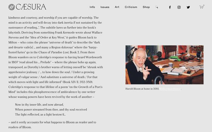 Caesura website 5