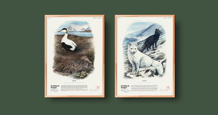 Svalbard Fangst 6