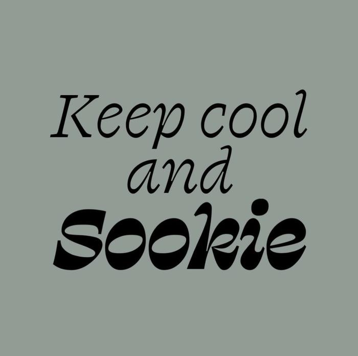 Hotel Sookie identity and website 8
