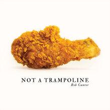Rob Cantor – <cite>Not A Trampoline</cite> album art