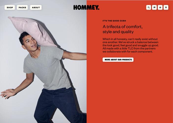 Hommey branding and website 15