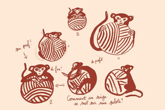 Le singe qui tricote 6