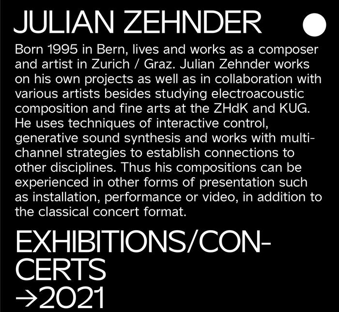 Julian Zehnder website 5