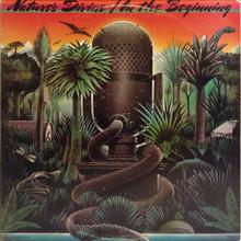 Nature's Divine – <cite>In the Beginning</cite> album art