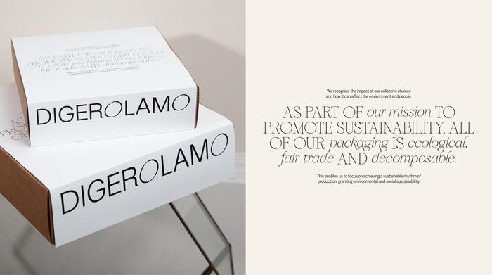 Digerolamo visual identity & website 4